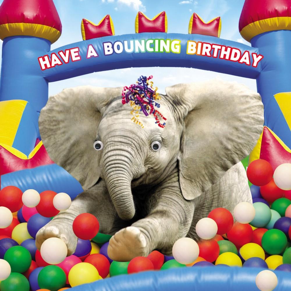 Geburtstag Humor Grußkarte Googlies Wackelaugen Have a Bouncing Birthday Elefant 12x17cm 507345